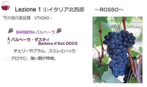 Lezione_vino_salute1